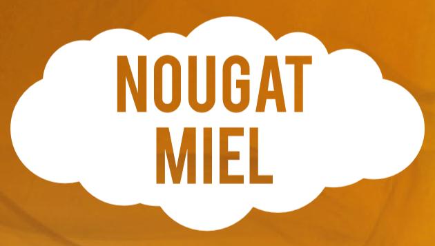 E-LIQUIDE NOUGAT MIEL Vapote-Moi 10 ml